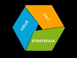 strategija-vizija-cilj-spletne-strani