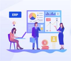 Samostojni ERP sistem